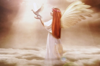 Angel From Dream Background for Android, iPhone and iPad