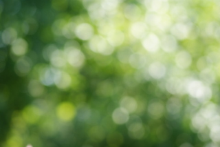 Free Abstract Green Picture for Android, iPhone and iPad