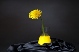 Yellow Flower Background for 960x800