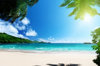 Vacation on Virgin Island Wallpaper for Android, iPhone and iPad