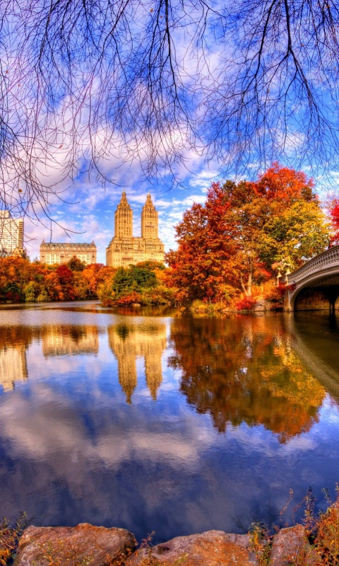 Architecture Reflection in Central Park wallpaper 480x800