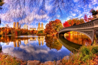 Kostenloses Architecture Reflection in Central Park Wallpaper für Android, iPhone und iPad