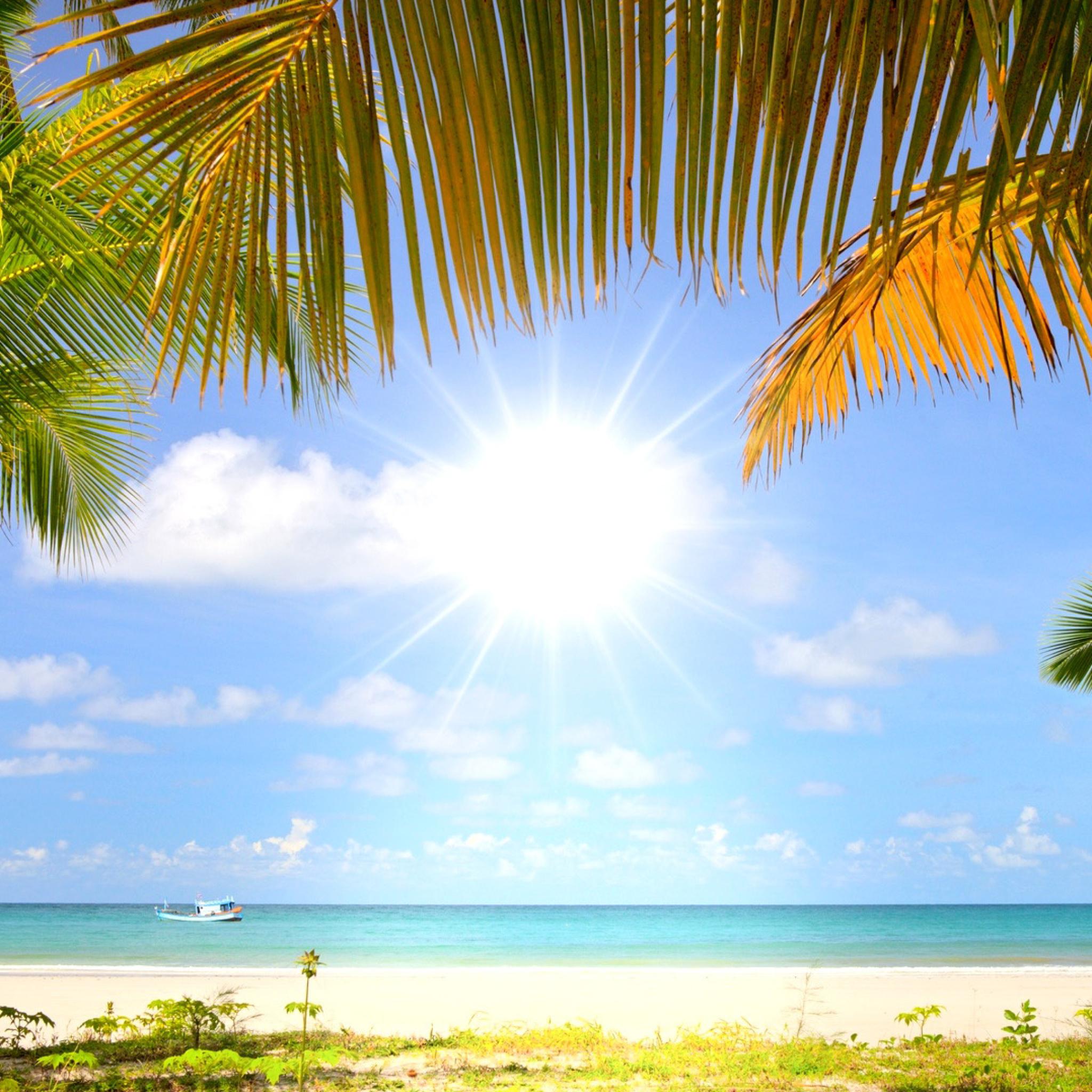 небольшом утро пляж лето картинки меню