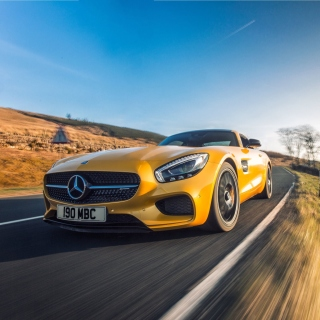 Free Mercedes AMG GT Picture for iPad mini