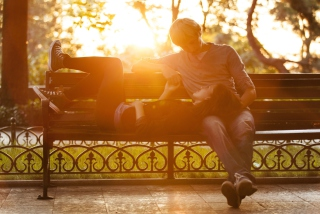 Romance In Park Wallpaper for Android, iPhone and iPad