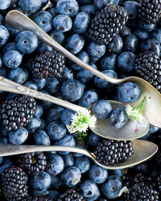 Обои Blueberries And Blackberries на 750x1334