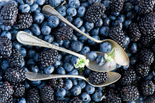 Blueberries And Blackberries Wallpaper for Android, iPhone and iPad