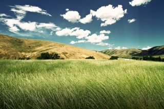 Free Green Valley Picture for Android, iPhone and iPad