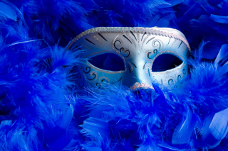 Free Mask And Feathers Picture for Android, iPhone and iPad