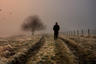 Lonely Man Walking In Field - Obrázkek zdarma