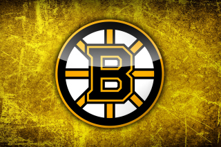 Boston Bruins NHL Wallpaper for 1920x1080