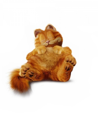 Free Lazy Garfield Picture for HTC Titan