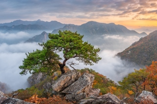 Bukhansan National Park in Seoul Wallpaper for LG Optimus U