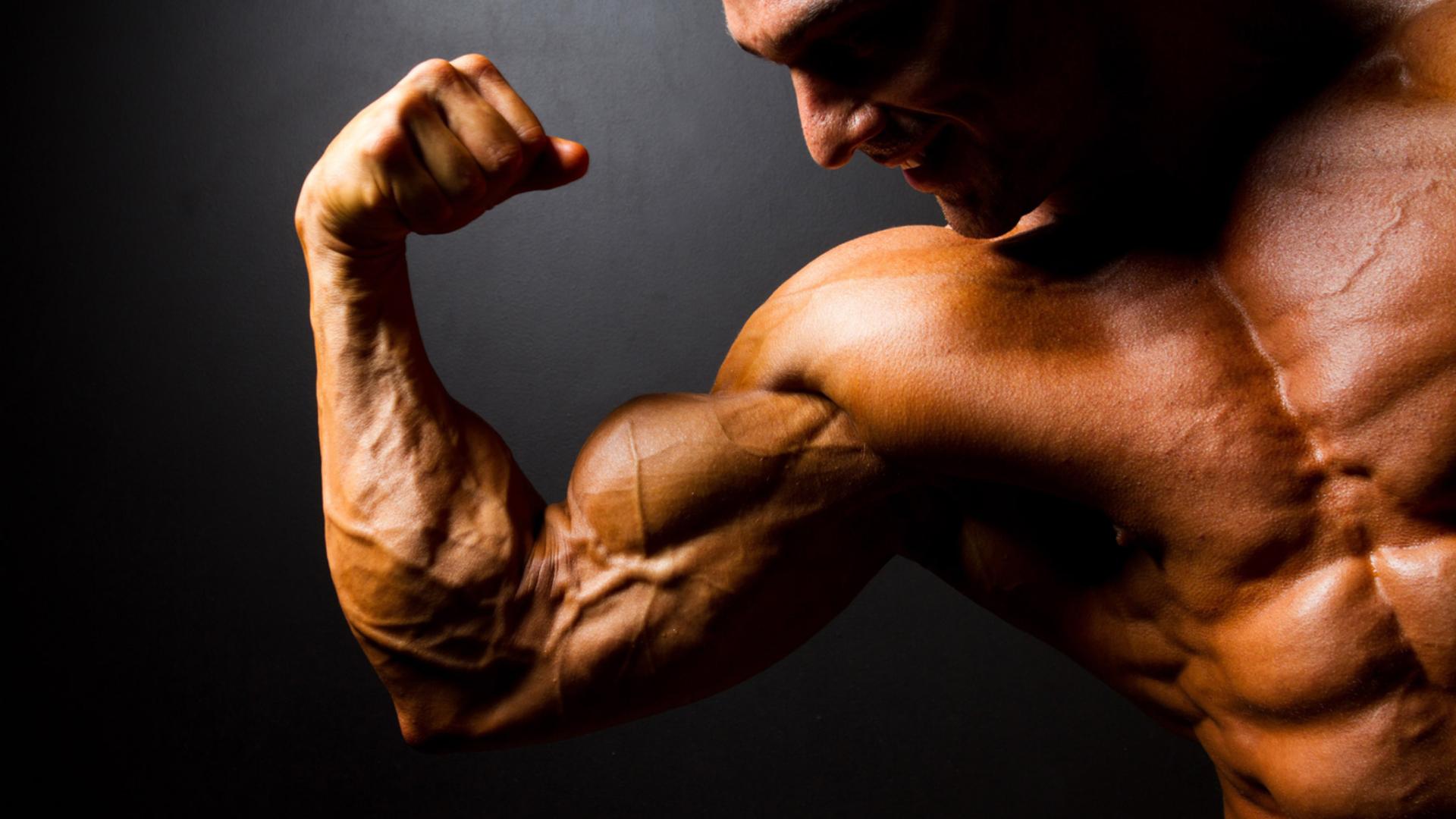 учебе смайлик картинки работы мышц при бодибилдинге различных исполнителей, джеев