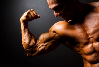 Body Building Wallpaper for 220x176