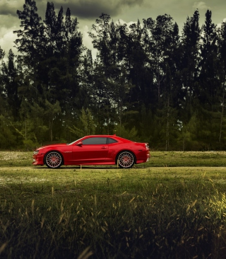Red Chevrolet Camaro Wallpaper for 240x320
