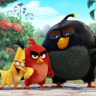 Картинка Angry Birds the Movie 2015 Movie by Rovio для телефона и на рабочий стол iPad mini 2