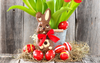 Free Chocolate Easter Bunny Picture for Android, iPhone and iPad