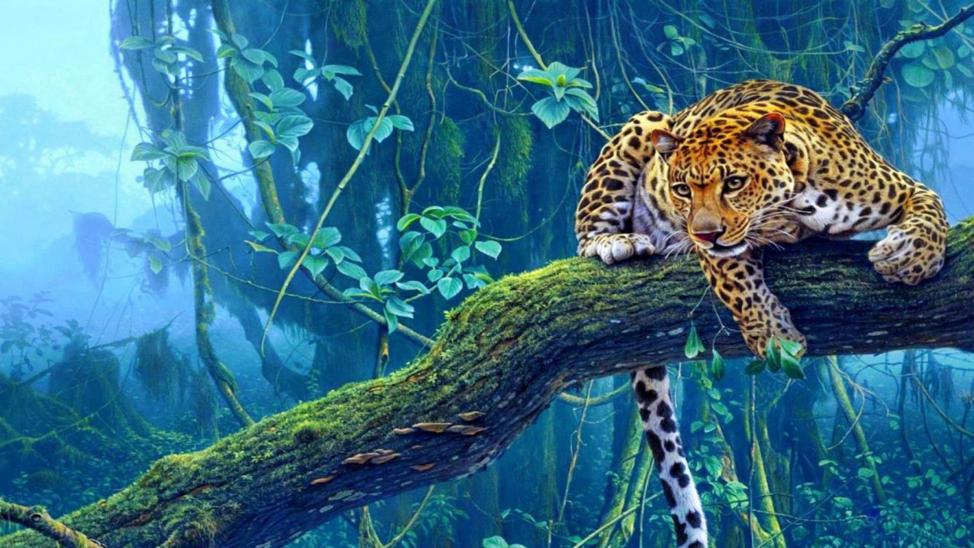 этого тигр и леопард в лесу картинки учитывая