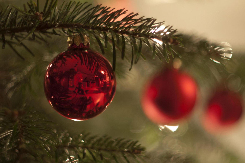 шар новый год красный ель ball new year red spruce загрузить