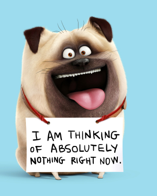 Kostenloses Mel from The Secret Life of Pets Wallpaper für iPhone 5