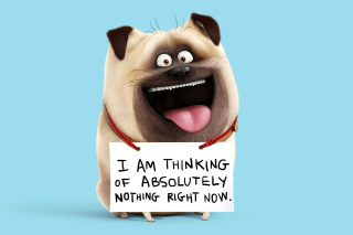 Kostenloses Mel from The Secret Life of Pets Wallpaper für Android 320x480