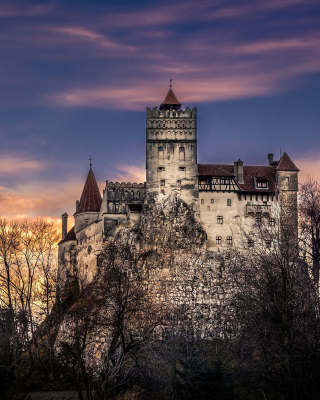 Free Bran Castle in Romania Picture for HTC Titan