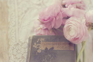Pink Ranunculus And Vintage Book Background for Android, iPhone and iPad