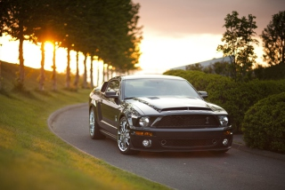 Kostenloses Ford Mustang Shelby GT500KR Wallpaper für 1280x960