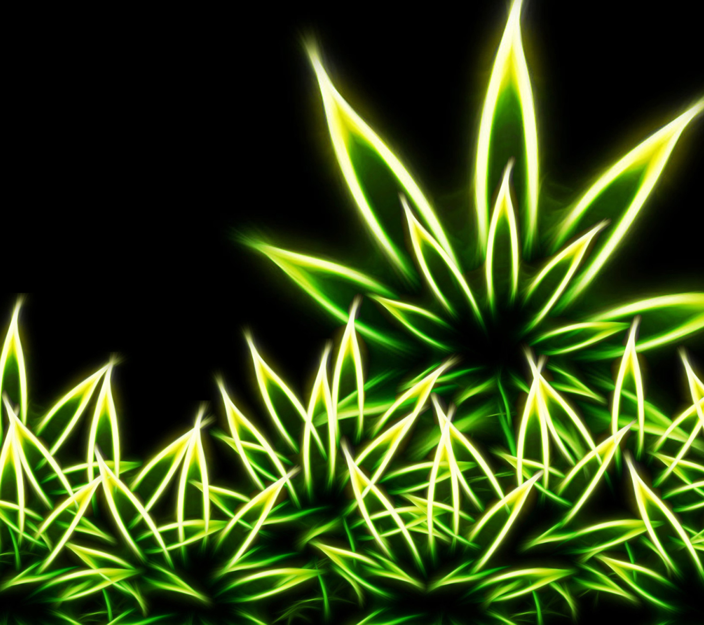 hd weed plant wallpapers