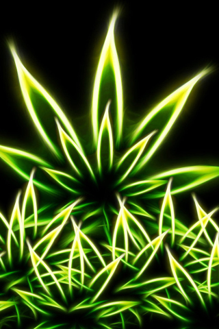 Marijuana para Huawei G7300