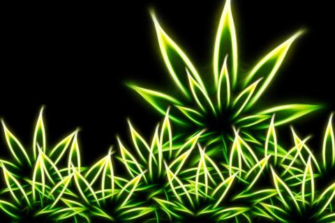 Marijuana para LG E400 Optimus L3