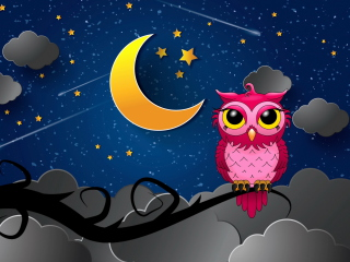 Silent Owl Night para Nokia X2-01