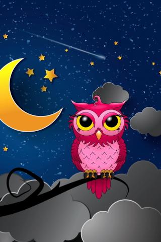Silent Owl Night para Huawei G7300