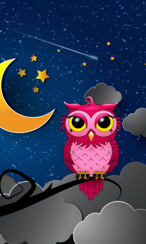Sfondi Silent Owl Night 480x800