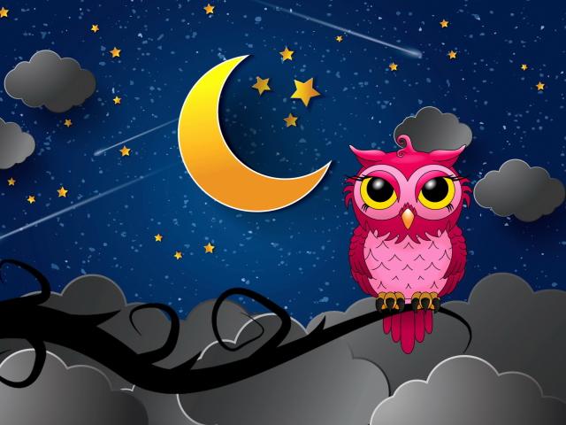 Silent Owl Night para Sony Ericsson XPERIA X8