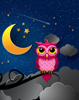 Silent Owl Night Background for Nokia Asha 306