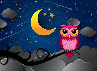 Silent Owl Night Picture for Widescreen Desktop PC 1920x1080 Full HD