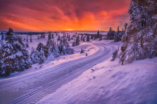 Toboggan road in Scandinavia Background for Android, iPhone and iPad