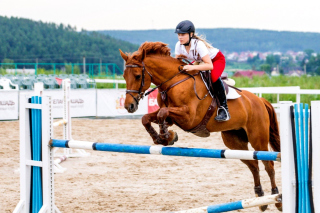 Equestrian Sport, Equitation Background for Android, iPhone and iPad