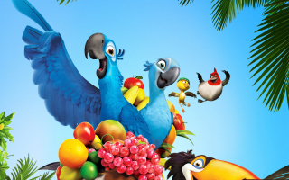 Free Rio Movie Picture for Android, iPhone and iPad
