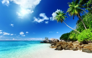 Tropical Beach sfondi gratuiti per 1920x1200