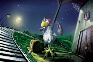 Chicken In Night Picture for Android, iPhone and iPad