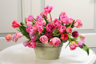 Free Bouquet of Tulips Picture for HTC Desire HD