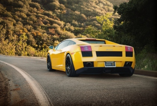 Free Yellow Lamborghini Picture for LG Optimus U