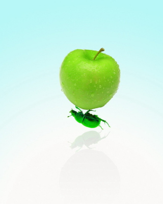 Apple And Bug papel de parede para celular para 480x854
