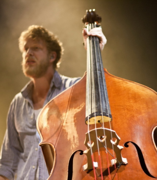 Free Man With Contrabass Picture for Nokia Asha 503