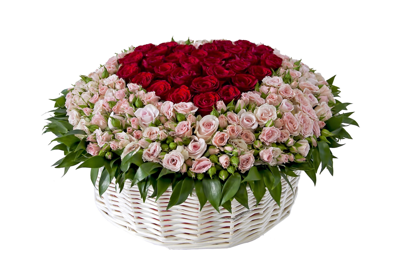 Basket-of-Roses-from-Florist-2880x1920.jpg