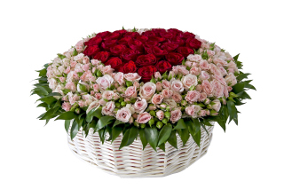 Basket of Roses from Florist Background for Android, iPhone and iPad