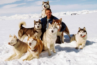 Eight Below Paul Walker - Obrázkek zdarma pro Widescreen Desktop PC 1680x1050